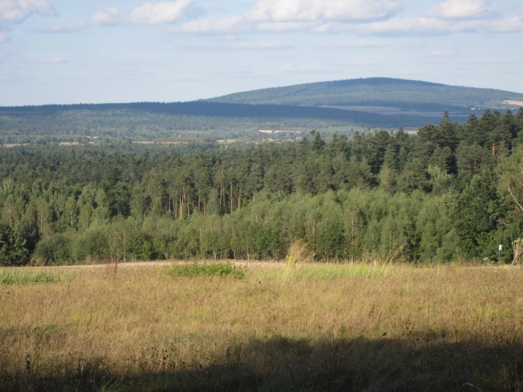 Góry Świętokrzyskie - Jeleniowska Mountain