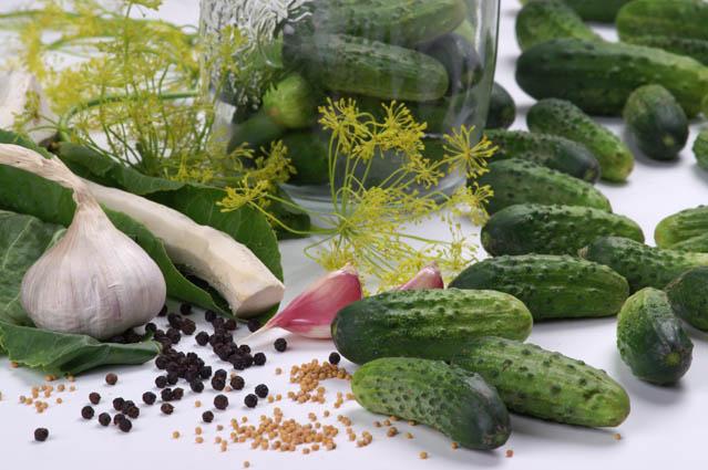 kulinaria, Świętokrzyskie Smaki kiszenie ogorków