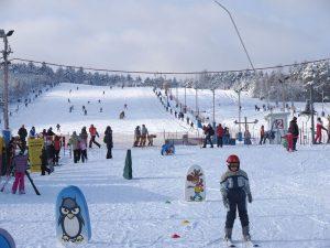 Ferie zimowe 2020 w gospodarstwie Świętokrzyskie Smaki, jedna ze stacji narciarskich