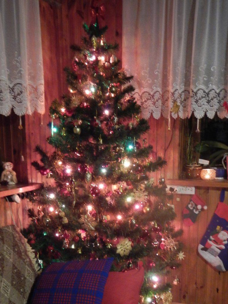 Boże Narodzenie , jodełka